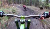 Moment TERIFIANT pentru un biciclist. Totul a fost surprins de camerele de filmat