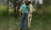 Captură INCREDIBILĂ pentru un vânător. Uite ce dimensiuni are broasca pe care a împușcat-o I