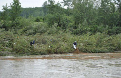 Zeci de pești morți, în România