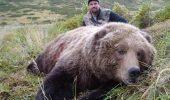 ȘOCANT! Răspunsul unui vânător străin care UCIDE URȘI BRUNI în România a uimit toată lumea!