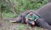 Pasiunea l-a ucis. Un VÂNĂTOR ÎMPĂTIMIT a murit STRIVIT de ELEFANTUL pe care îl vâna
