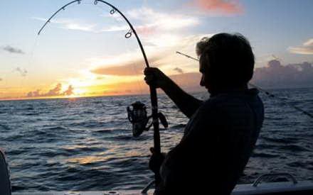 Uite ce creatură au prins pescarii olandezi I FOTO