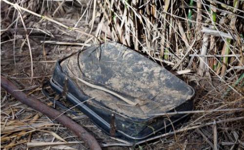 O femeie a găsit o valiză veche, abandonată într-un tufiș! Când a văzut ce era în interior, a rămas fără cuvinte I VIDEO