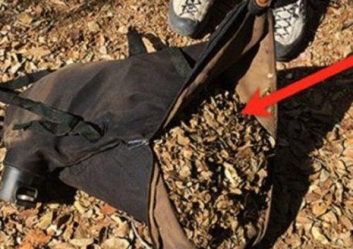 A găsit o geantă în pădure. Când a deschis-o A ÎNLEMNIT! FOTO
