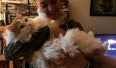 O cunoscută ACTRIȚĂ, mare iubitoare de animale! Are casa plină de căței și pisici