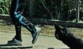 ȘOCANT! Un angajat din cadrul Primăriei şi-a târât câinele mort pe străzile din oraş