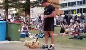 Filmarea în care un cățel nu vrea să mai plece acasă din parc – a devenit virală pe Facebook I VIDEO