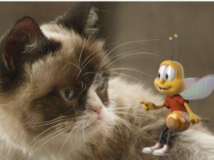 Pisici care au fost ÎNȚEPATE DE ALBINE! Prima te va face să râzi în hohote