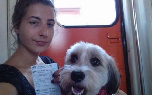 """Reacția unei iubitoare de animale: """"Nenea domnu' ministru Cuc, avem şi noi o doleanță la CFR. Dacă tot plătim bilet întreg pentru persoană şi patruped, am vrea nişte locuri în tren…"""""""