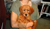 Impresionant: A adoptat un căţel, iar patrupedul i-a schimbat viața total. Cum a salvat-o Bunker pe Julie