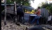 Imagini cu IMPACT EMOȚIONAL puternic! Un bărbat a fost filmat în timp ce bătea cu bestialitate un CAL