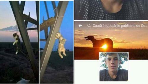Cruzime greu de descris! O FOTOGRAFIE cu două animale SPÂNZURATE îngrozește rețeaua de socializare Facebook