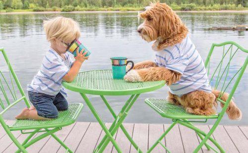 Prietenia dintre un copil și cățelul familiei este este atât de STRÂNSĂ încât cei doi sunt de NEDESPĂRȚIT
