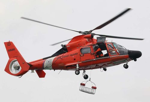 Emoționant! Elicopter folosit pentru SALVAREA unui ANIMAL cu gabarit mare