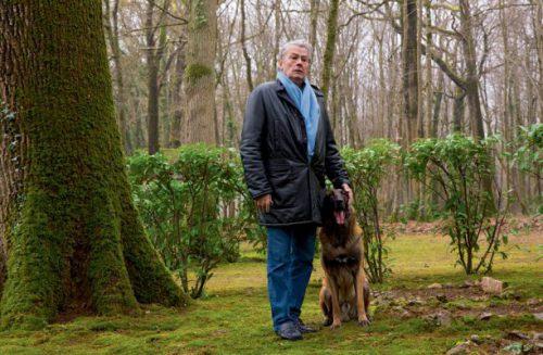 """A ȘOCAT pe toată lumea! Alain Delon despre FUNERARIILE sale: """"Vreau să fiu înmormântat în mijlocul câinilor…"""""""