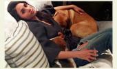 Meghan Markle vrea să adopte un câine abandonat! Motivul este HALUCINANT