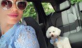 Modul INCREDIBIL în care Nobby, REGINA Instagramului, FACE BANI în România