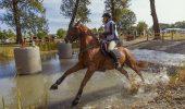 KARPATIA HORSE SHOW și-a deschis PORȚILE SPECTATORILOR! Locul unde se adună iubitorii de cai