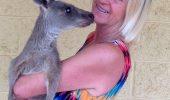 Momente CRITICE pentru o FAMILIE din Australia. Au fost ATACAȚI de un cangur. Informații de ultimă oră!