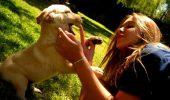 """Cercetătorii au făcut o DESCOPERIRE UIMITOARE: """"Iubitorii de animale sunt diferiți genetic față de ceilalți oameni"""""""