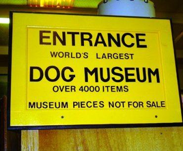 Muzeul Câinelui