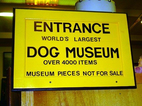 Știați că există Muzeul Câinelui? Ce adăpoștește acesta?
