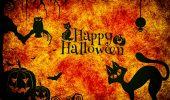 Pregătiți pentru Halloween? Cele mai COOL idei de costume pentru animale / GALERIE FOTO