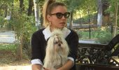 "Diana Dumitrescu, despre prietenul său canin! ""Când l-am văzut pe Aki ne-am topit amândoi…"""