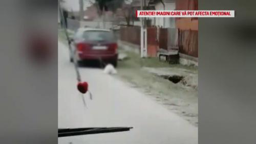 HALUCINANT! Cine este bărbatul din Vlădeşti care a legat un câine de mașină și l-a TÂRÂT PE ȘOSEA
