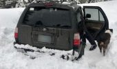 Un bărbat şi câinele său au rămas blocaţi în mașină timp de 5 zile. Este UIMITOR cum au SUPRAVIEȚUIT