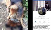 POLIȚIA ÎN ALERTĂ! Stăpânul unui câine a postat pe Facebook imagini dure cu animalul său de companie. Atenție, imagini cu puternic impact emoțional!