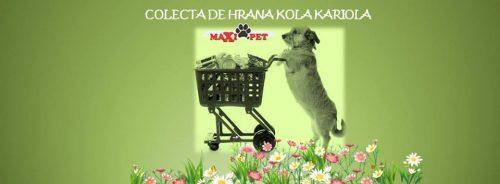 Haideți să dăm împreună o mână de ajutor! Va avea loc o nouă COLECTĂ de hrană pentru blănoșii Kola Kariola!