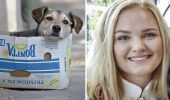 Gestul de dragoste pentru un MAIDANEZ s-a transformat într-o tragedie pentru o tânără! Părinții fetei trag un SEMNAL DE ALARMĂ pentru toți iubitorii de animale
