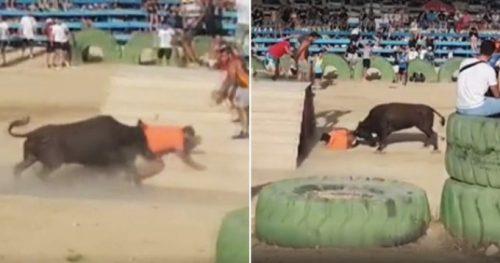 Un FESTIVAL din Spania s-a încheiat TRAGIC! Un tânăr a devenit ținta unui taur…