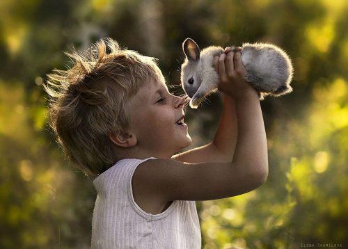 E bine pentru copii să aibă animale de companie. Dar, aveți grijă…