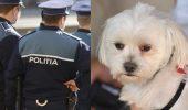 Moldoveanul Bordea a ajuns la Poliție